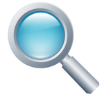 search engine optimization magnify